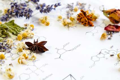 dried herbs on science sheet